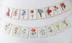 vintage flower illustration bunting  peony and thistle (etsy)