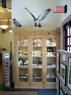 Eaton Canyon Natural Area and Nature Center located in Pasadena, California. Display Case, Display Ideas, Nature Center, Bathroom Medicine Cabinet, Locker Storage, Led, Activities, Furniture, Home Decor