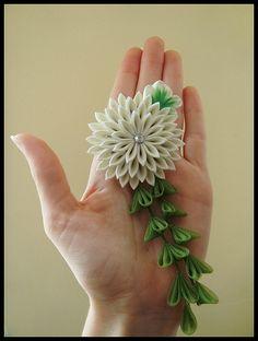 Chrysanthemum kanzashi
