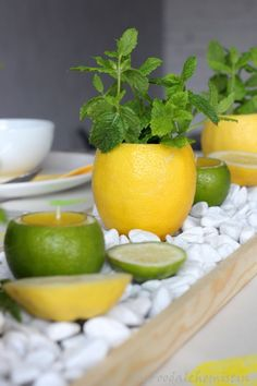 Lemon-mint table decoration - Fruity, fresh summer table decorations … What great, fresh colors … this yellow and green combi - Mint Table, Summer Table Decorations, Sweet Home, Wie Macht Man, Deco Table, Floral Arrangements, Diy And Crafts, Brunch, Food And Drink