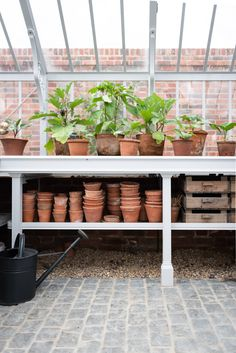 Greenhouse Benching Inspiration in the greenhouse at A Place in the Garden - terracotte pots