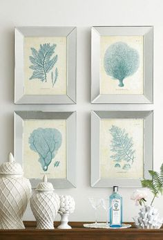 Coral Spray Prints
