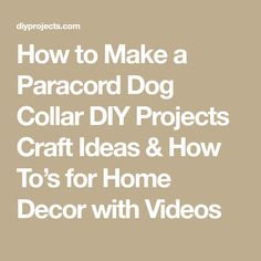 How to Make a Paracord Dog Collar DIY Projects Craft Ideas & How To's for Home Decor with Videos