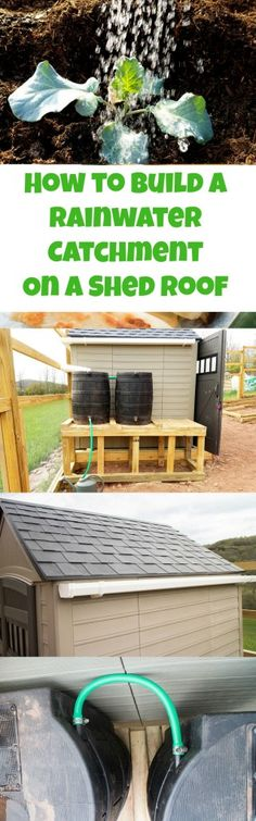 Layout and How to Build a Rainwater Catchment On a Shed Roof. It's easy to attach gutters onto your shed roof to collect water! Perfect solution for catching rainwater for your vegetable garden. Outdoor Projects, Garden Projects, Backyard Projects, Outdoor Ideas, Backyard Ideas, Diy Projects, Organic Gardening, Gardening Tips, Vida Natural