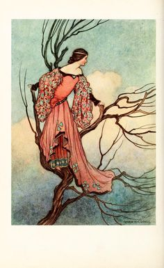The Fairy Book - A book of fairy tales with a few beautiful illustrations.