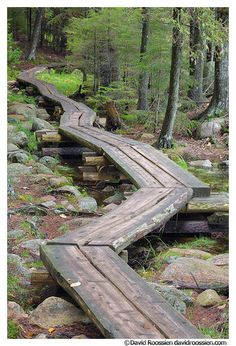 the coolest little pathway along jordon pond in acadia national park, bar harbour, maine.love this pathway! Oh The Places You'll Go, Places To Travel, Places To Visit, Acadia National Park, National Parks, Dream Vacations, Vacation Spots, All Nature, Indian Summer