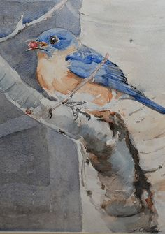 Bluebird with holly berry, Linda Champ - might add this in the childrens nursery mural