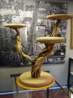 3-shelf juniper cat tree.