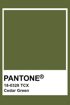 Pin by Color Wheel on Green: Moss, Olive, Avocado, Khaki, Dried . Green Things green color wheel with names Pantone Green Colors, Pantone Colour Palettes, Green Colour Palette, Pantone Color, Paleta Pantone, Pantone Tcx, Pantone Swatches, Colour Schemes, Color Trends