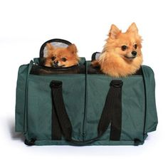 Sturdibag Large Divided Pet Travel Carrier Carry 2 Pets in 1 Carrier Airlineaaa Approved Pet Travel Carrier Tote Size Large 18l X 12w X 12h Prior to Flexing Down Evergreen