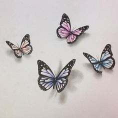 Image result for drawings of butterflies Realistic