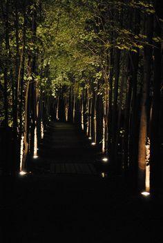 Grounds for Sculpture after dark