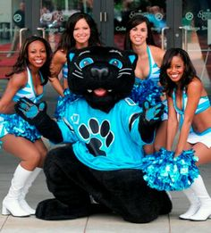 Sir Purr With the top cats South Carolina Panthers, Carolina Panthers Cheerleaders, Panthers Football Team, Panther Football, Nfl Cheerleaders, Football Fans, Cheerleading, Carolina Pride, Carolina Blue