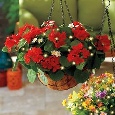 Our hanging flower basket complements all garden décor and its lifelike blooms look just as lovely inside your home or on a 3-season patio. Featuring a built-in timer that automatically turns the warm white LEDs on for 6 hours, then off for 18, this hanging planter also boasts 15 LEDs that shine bright at night. We have made it easy to add natural beauty to your entryway, porch, or patio without worrying about watering.