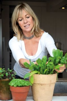 Annabel Langbein the Free Range Cook. So simple and satisfying to have fresh herbs and salad greens at your fingertips! http://www.annabel-langbein.com/