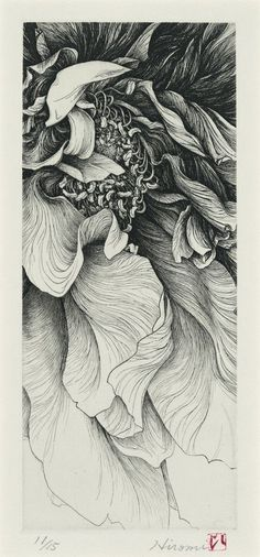 """Pen and ink flower.  Incredible!  """"Pen and ink of a flower is usually heavy on exaggerated values to deepen 3D effect of curves in images.  This is most of the time very necessary in the choice of subject."""" - Carlo de Leon Art Opinions™ #artopinions #carlodeleon:"""