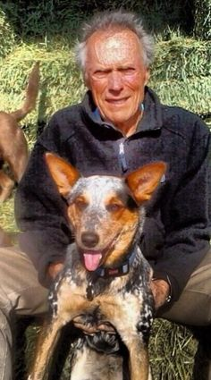 Clint Eastwood, Australian Cattle Dog, Special People, Old West, Animals And Pets, Superstar, Cute Dogs, Best Friends, Hero