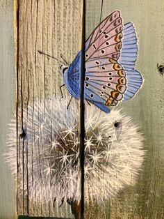 Art, barn, wood, painting, dandelion, butterfly, country, rustic, pallet, country, home decor, acrylic, blue, teal, white, artwork,