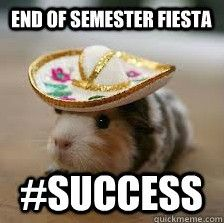 An end of semester fiesta! What else could you want? #success #semestersuccess #usq