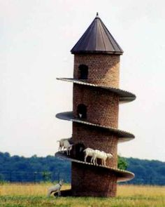 Swiss Mt. Goat tower in Illinois - road trip any one?