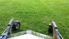 Die richtige Rasenpflege ist keine Zauberei, wir von A-Z Gartenbau kennen die Geheimnisse.  #Rasenpflege #Rasen #Gartenpflege
