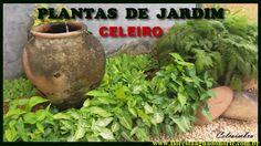 Amazônia - São Francisco do Pará - O Celeiro - Jardim -  Celcoimbra - FAN