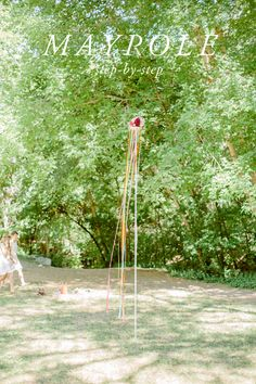 Make a maypole - The House That Lars Built