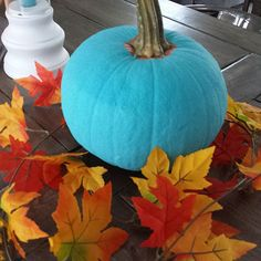 Paint the pumpkin turquoise