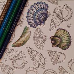Seahorse Lost Ocean Johanna Basford Coloured By Ness