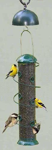 bird feeder Super Spiral 18in. Sunflower Feeder/Twirl A Squirrel Combo