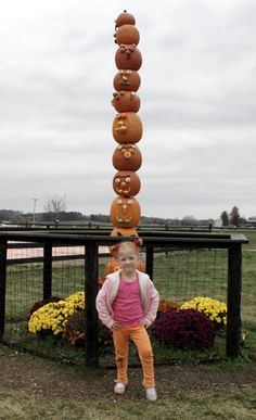 These pumpkin patches in Chicago's far western suburbs and northern Illinois feature are recommended by Go West readers. Many offer fun fall activities.