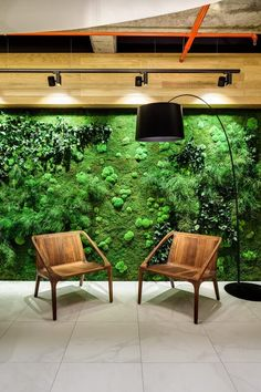 Vertical Garden Solutions | Bringing Walls alive – GreenScaped Buildings