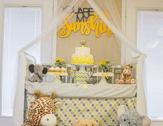 """You Are My Sunshine / Baby Shower """"Laurin's Baby Shower for Little Miss Riley!"""" 