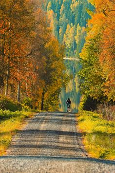 🇸🇪 Uphill climb on an autumn afternoon (Värmland, Sweden) by Maria A cr. Fall Photos, Nature Photos, Beautiful World, Beautiful Places, Vie Simple, Autumn Scenery, Back Road, The Great Outdoors, Autumn Leaves