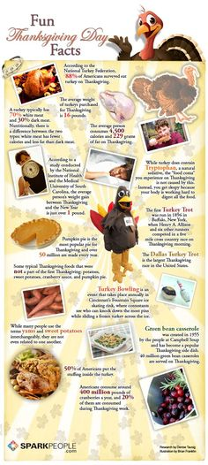 Thanksgiving Trivia | Did you learn anything new? Have any Thanksgiving trivia to share?