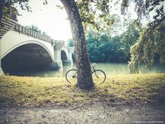bike and shoot in park - photography by Fabrizio Pece