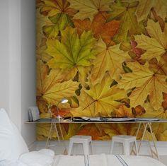 Wall mural R11931 Autumn Leaves