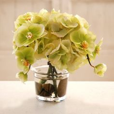 Jane Seymour Hydrangea  Phalaenopsis Orchid 10H in. Silk Flower Arrangement - http://yourflowers.us/?p=3013