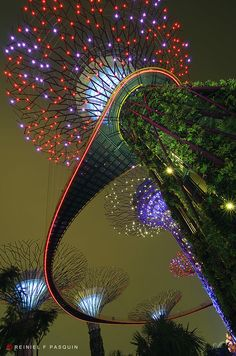 super trees gardens by the bay singapore every evening for fifteen minutes the