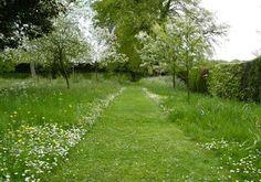 Voici une allée en gazon qui traverse une prairie fleurie. Simple mais efficace si l'on souhaite un jardin à l'allure champêtre. Découvrez comment réussir une prairie fleurie : http://www.amenagementdujardin.net/prairie-fleurie-vraiment-facile-a-reussir/