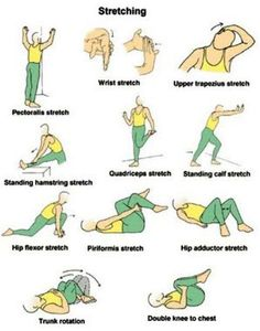 EXCLUSIVE PHYSIOTHERAPY GUIDE FOR PHYSIOTHERAPISTS: ACTIVE STRETCHING EXERCISES