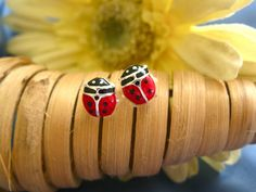 Ladybird earrings ~ An enchanting gift of luck If you want to encourage and support a friend or loved one to be lucky and think positively and at the same time let them know how much you care, send these charming ladybird earrings. Ladybirds are generally regarded as a symbol of luck and good fortune and make a meaningful present to wish someone success.