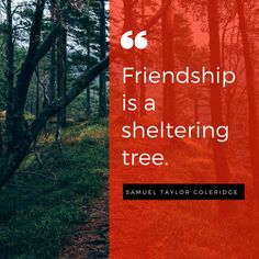 "The Morning Tea.... ""Friendship is a sheltering tree."" - Samuel Taylor Coleridge #inspirationalquotes #inspiration #quotes"