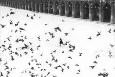 Omaggio al grande fotografo Gianni Berengo Gardin