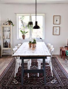 Solid frog #diningspace #rug #greenplants