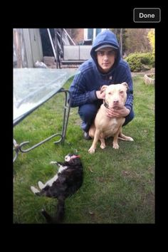 Prosecute Stafford man fr mistreating animals & showing off Stop Animal Cruelty, Animal Testing, Animal Rescue, Cane Corso, Sphynx, Chinchilla, Wild Life, Otter, Rottweiler