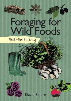 Foraging for wild food is growing more and more popular as people become increasingly interested in eating not only organic but also local fresh food - for free. You'd be surprised at the bounty of wi