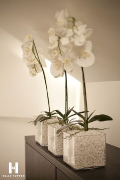 Luxury White Pebbles Interiors That Will Blow Your Mind - storczyki - Orchideen Orchid Flower Arrangements, Orchid Plants, Orchid Pot, Diy Garden Decor, Diy Home Decor, Deco Nature, White Pebbles, Deco Floral, White Orchids
