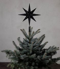 black christmas tree christmas tree star Are you interested in our Christmas tree top star With our black Christmas tree topper you need look no further. Black Christmas Tree Decorations, Pencil Christmas Tree, Fabric Christmas Trees, Black Christmas Trees, Christmas Tops, Christmas Tree Ornaments, Christmas Star, Christmas Tree Without Topper, Whoville Christmas