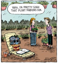 The Gardening Comic Strips | Shade Garden